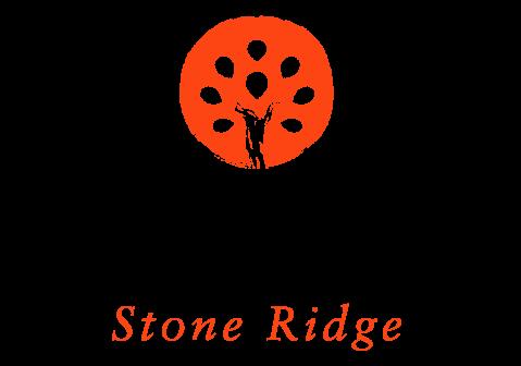 stone ridge montessori