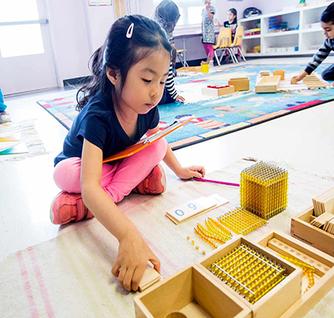 Building blocks - Stone Ridge Montessori